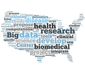 Image result for big data health studies